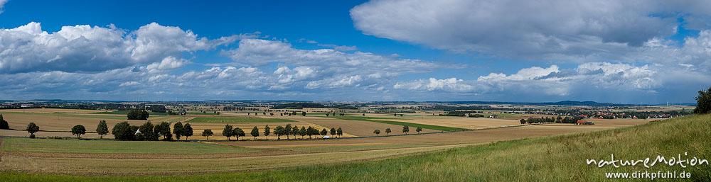 Kulturlandschaft mit Getreidefeldern, Feldwegen, Rainen und Windrädern, Desenberg, Umland von Warbur, Warburg, Deutschland