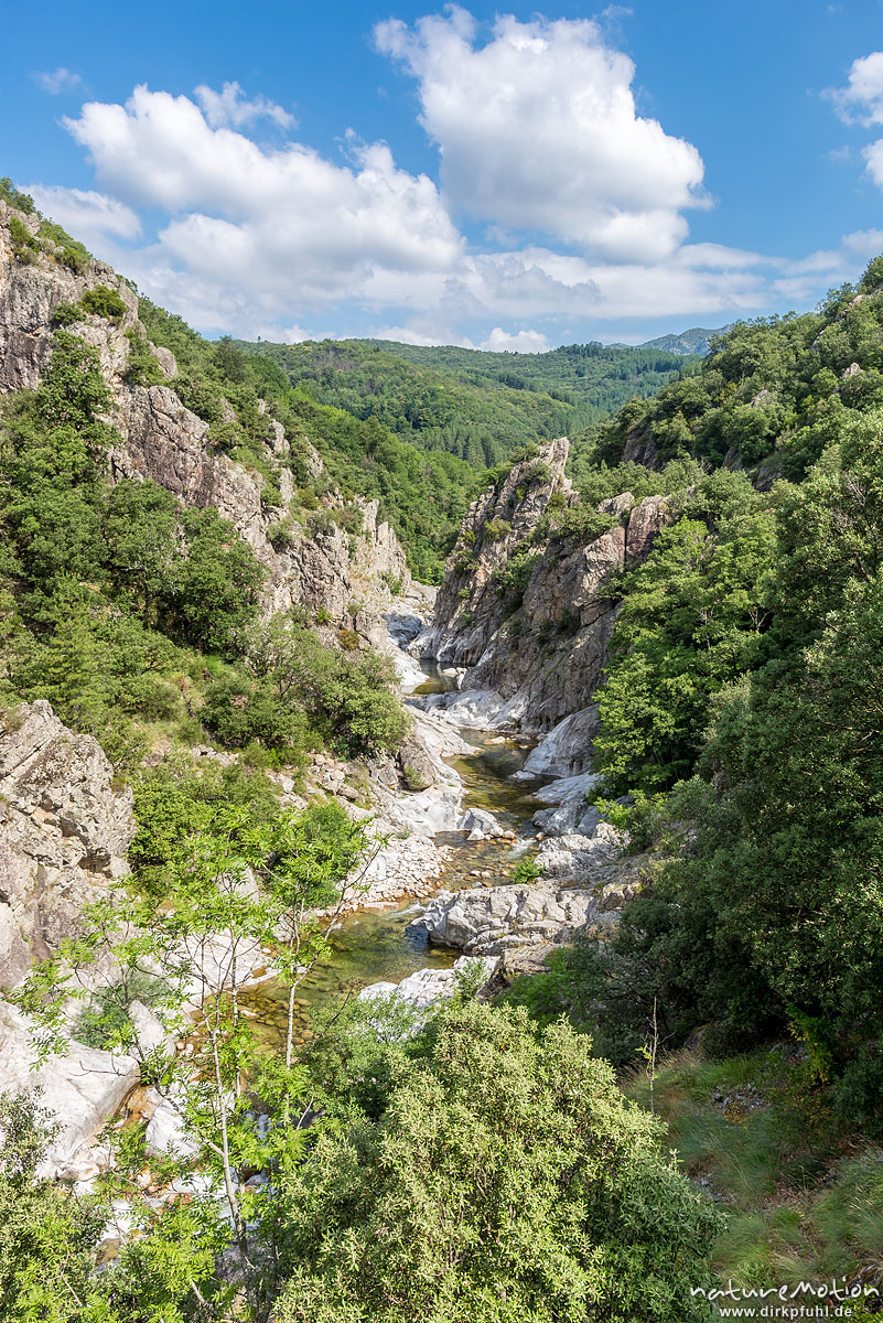 Felsschlucht im Tal der Baume, Largentiére, Frankreich