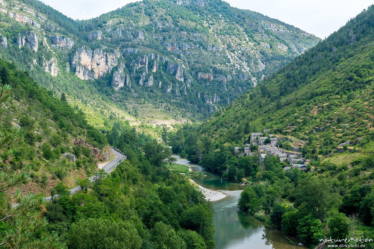 Hautes Rieves, Wanderung entlang der Ufer des Tarn zwischen La Malene und Saint-Chely-du-Tarn, Gorges du Tarn, Florac, Frankreich