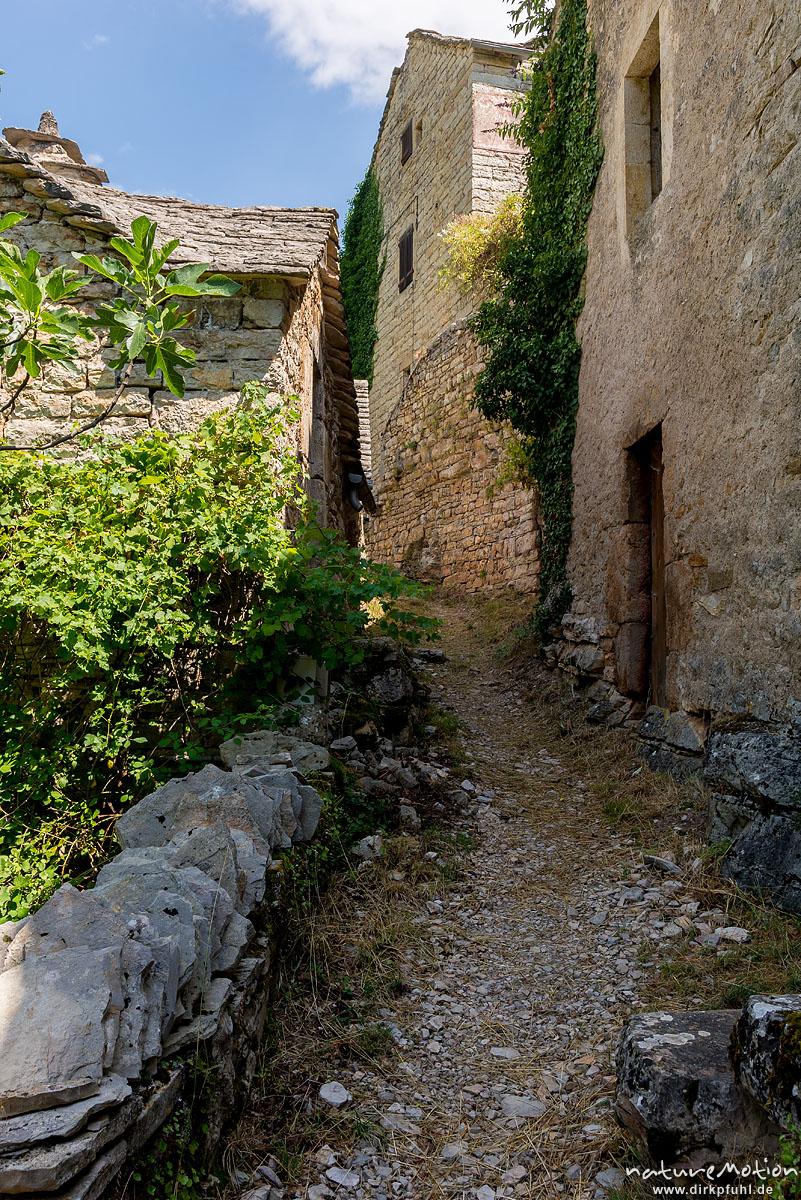 alte Steinhäuser in fast verlassener Siedlung, Hautes Rieves, Wanderung entlang der Ufer des Tarn zwischen La Malene und Saint-Chely-du-Tarn, Gorges du Tarn, Florac, Frankreich