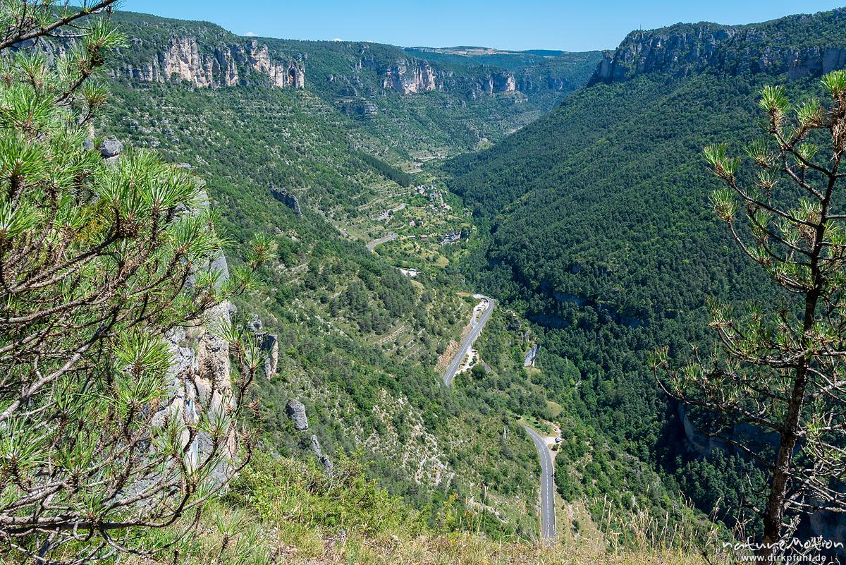Le Truel, Felsformationen, Tal der Jonte, Felswanderung Schluchtenwelt bei le Rozier, Gorges de la Jonte, Le Rozier, Frankreich