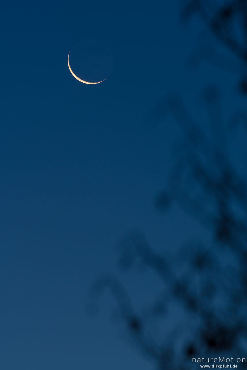 Mondsichel bei Sonnenaufgang, Göttingen, Deutschland