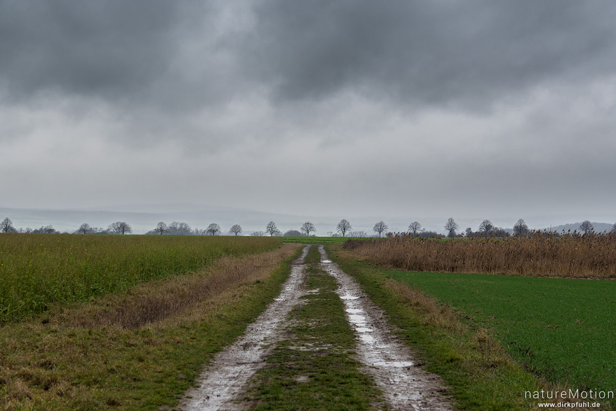 Regenwolken über Agrarlandschaft, Feldweg, Gartemühle, Göttingen, Deutschland