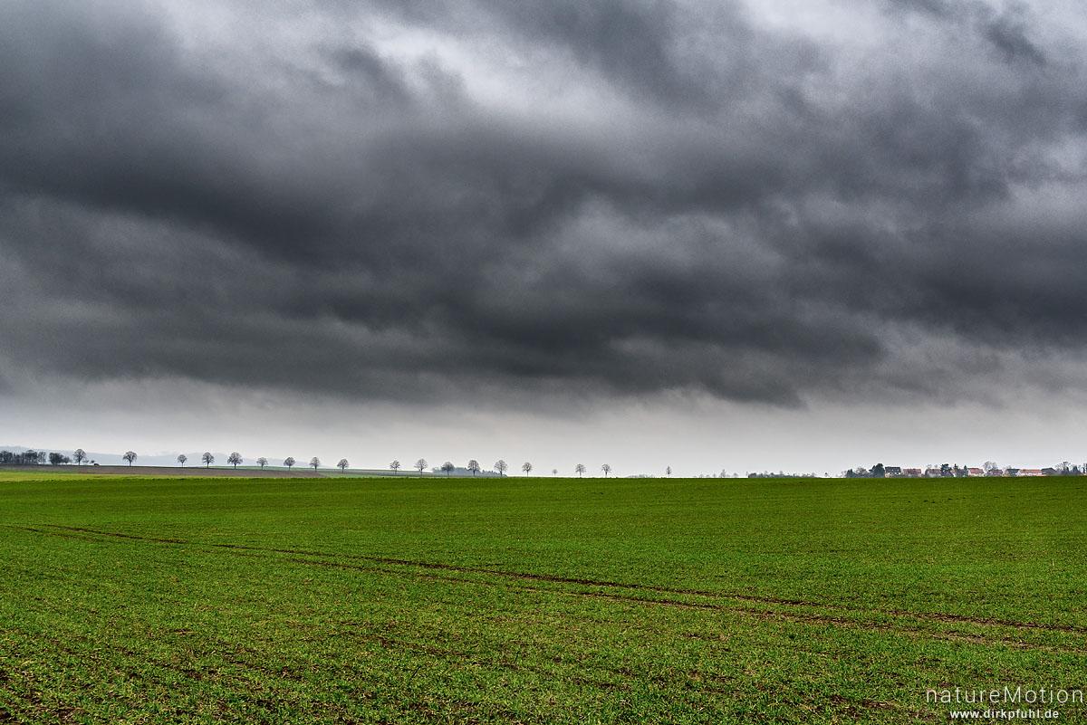 Regenwolken über Agrarlandschaft, Baumreihe, Gartemühle, Göttingen, Deutschland