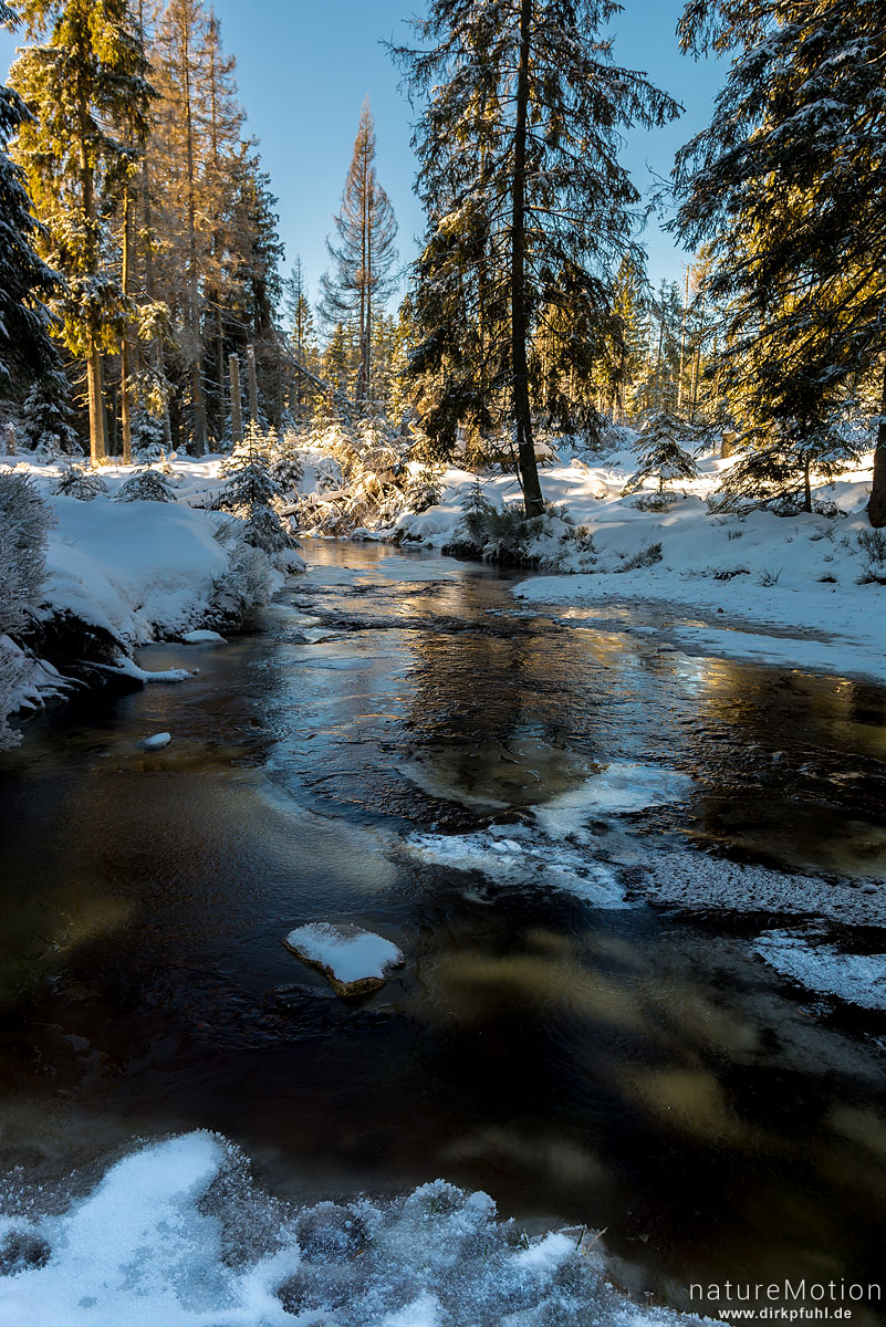 Bachlauf, teilweise zugefroren, Oberlauf der Oder, Torfhaus, Deutschland