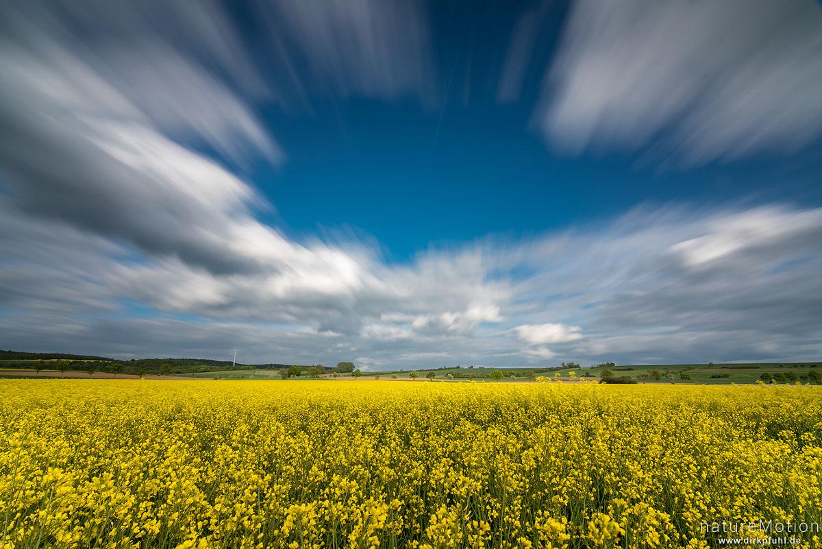 Wolken ziehen über blühendes Rapsfeld, Feldmark südlich von Göttingen, montage, Göttingen, Deutschland