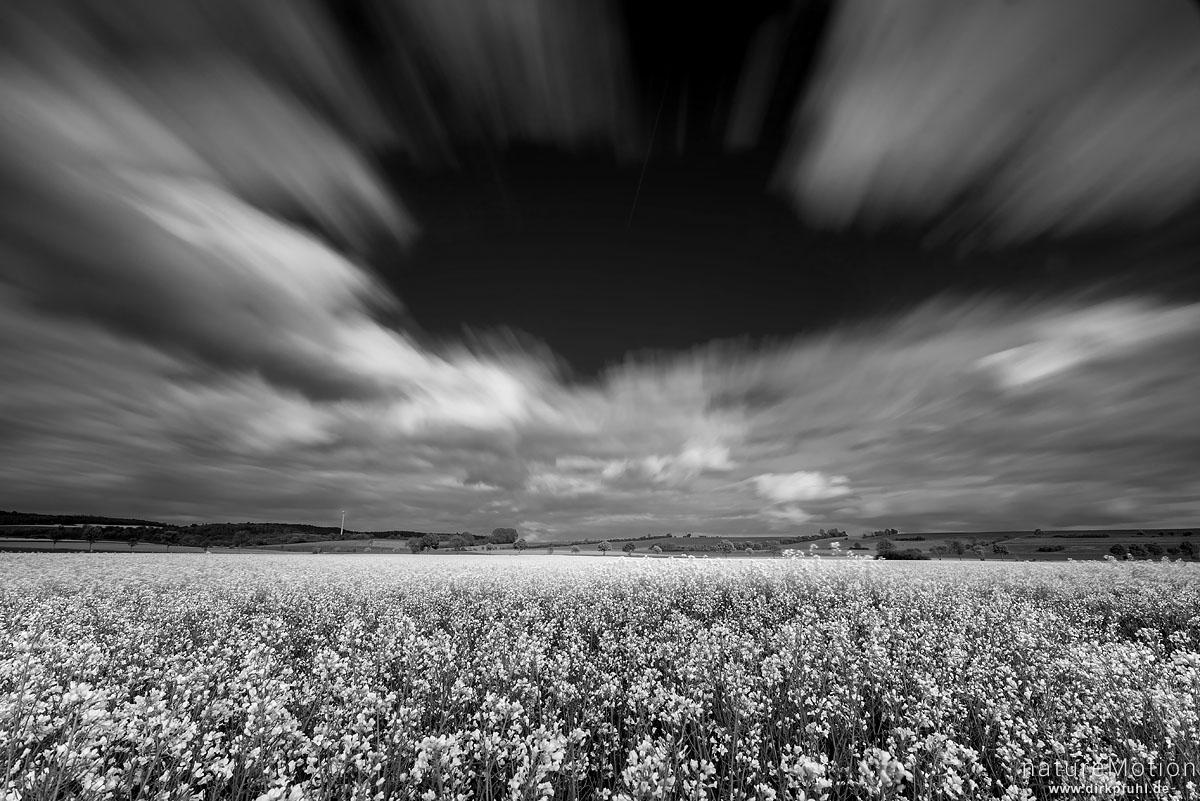Wolken ziehen über blühendes Rapsfeld, Feldmark südlich von Göttingen, Göttingen, Deutschland