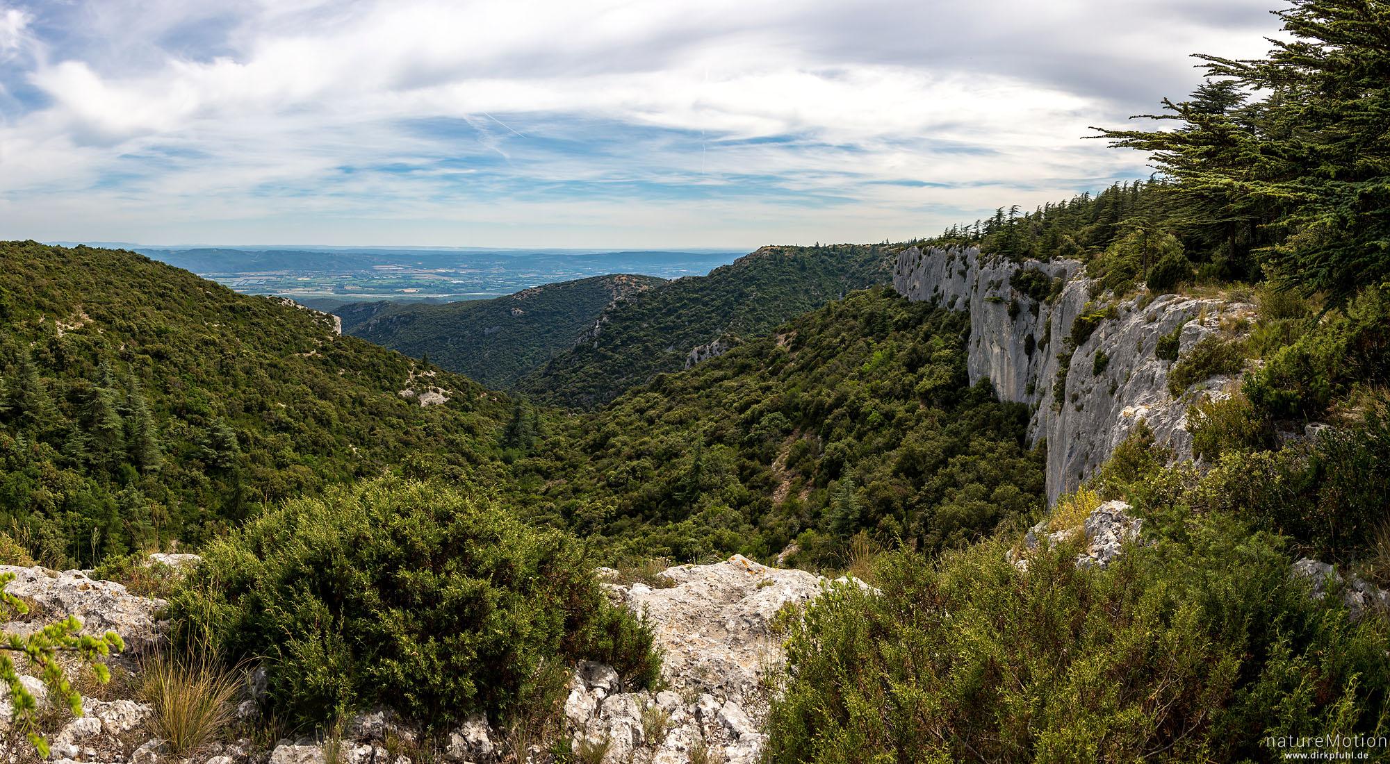 Kalkklippen, Forêt des cèdres du Luberon, Bonnieux - Provence, Frankreich
