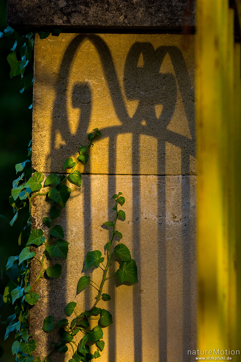 Schatten eines gusseisernen Tores auf dem Torpfosten, St-Massian, Apt - Provence, Frankreich