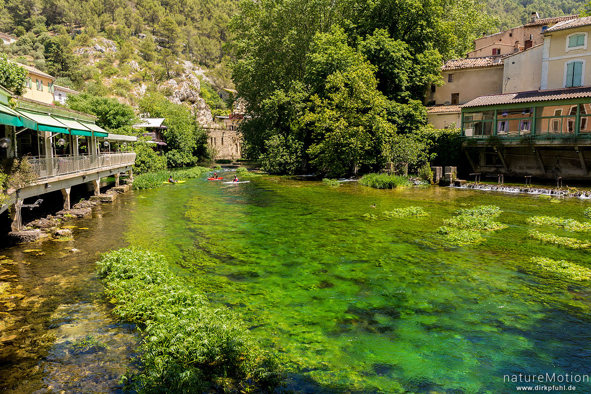Quellfluss der Sorgue, Paddler, Fontaine-de-Vaucluse, L'Isle-sur-la-Sorgue - Provence, Frankreich