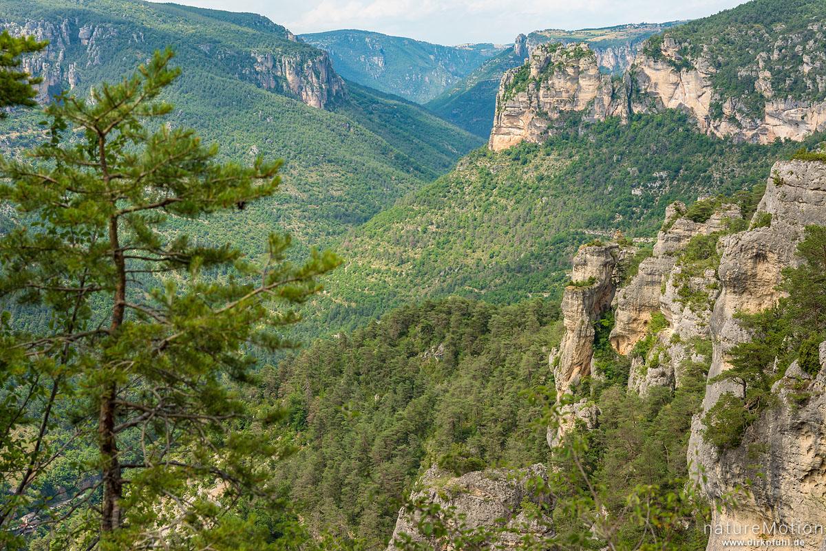 Gorges du Tarn, Le Rozier, Frankreich