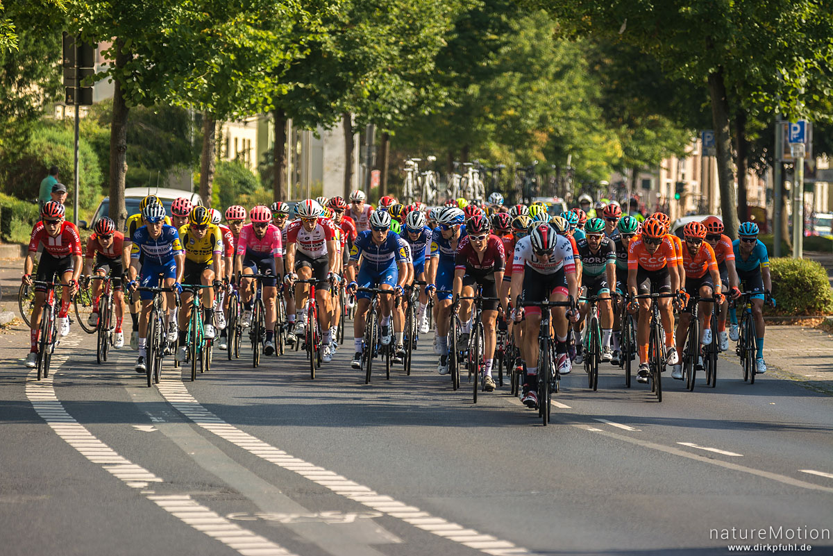 Deutschlandtour 2019, 2. Etappe Marburg - Göttingen, Hauptfeld, Göttingen, Deutschland