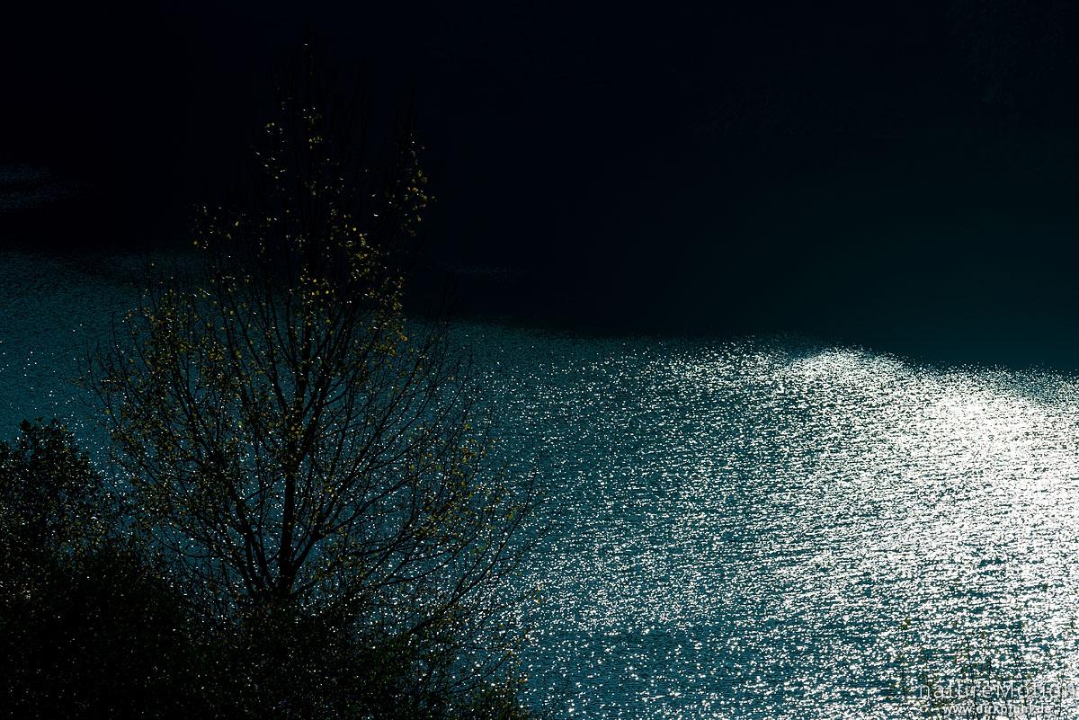 Kalbesee, Lichtreflexe auf der Wasseroberfläche, Baumkronen mit Herbstfärbung, Hoher Meißner, Deutschland