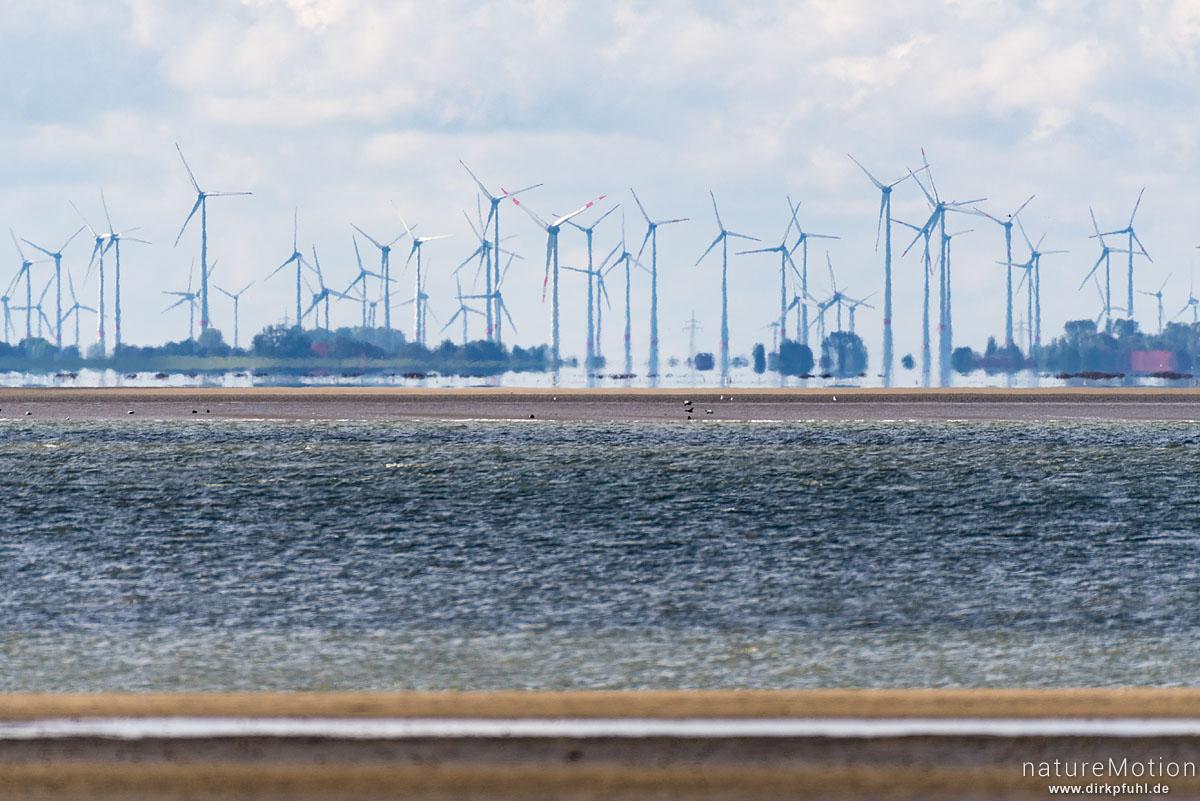 Windräder an der Küste bei Neuharlingersiel, Spiekeroog, Deutschland