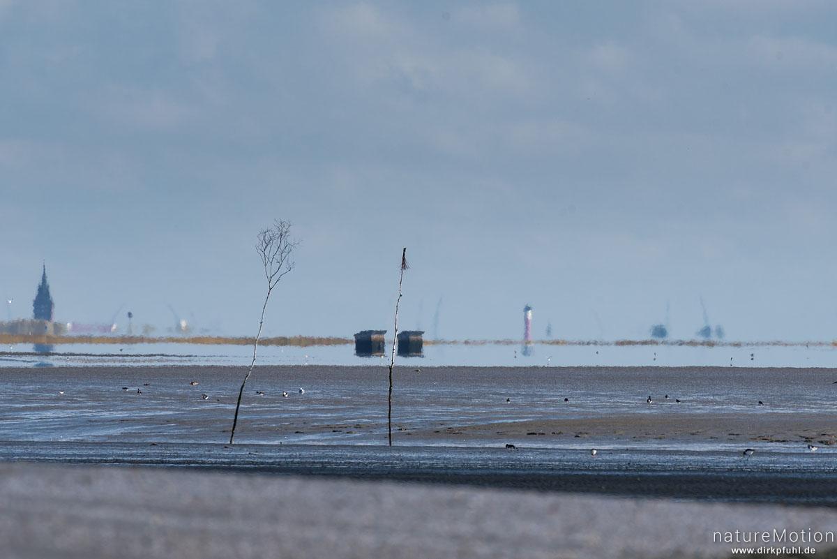 Sandstrand und Watt bei Ebbe, Fahrrinne, Kästen im Watt, Am Horizont Wangerooge, Spiekeroog, Deutschland