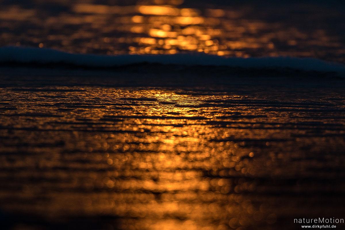 Sonnenuntergang, Spülsaum bei ablaufendem Wasser, Lichtreflexe, Spiekeroog, Deutschland