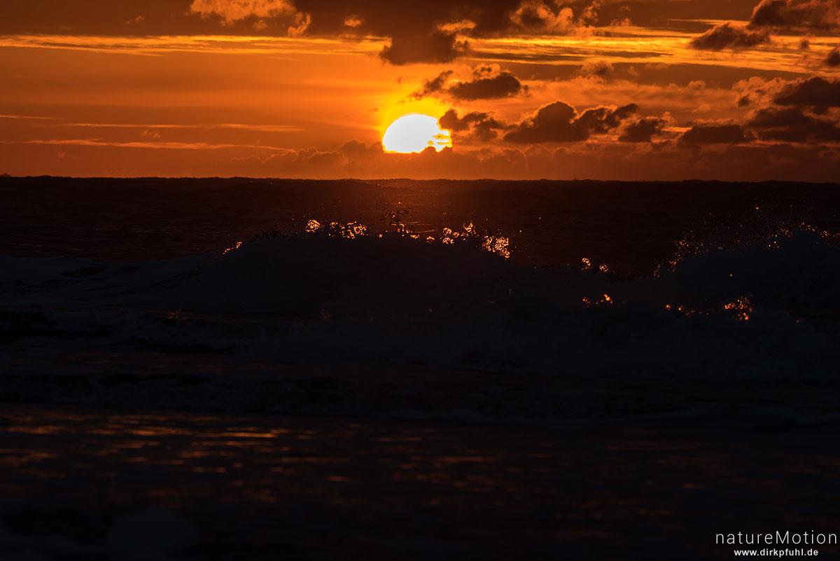 Sonnenuntergang, Spülsaum bei ablaufendem Wasser, Spiekeroog, Deutschland