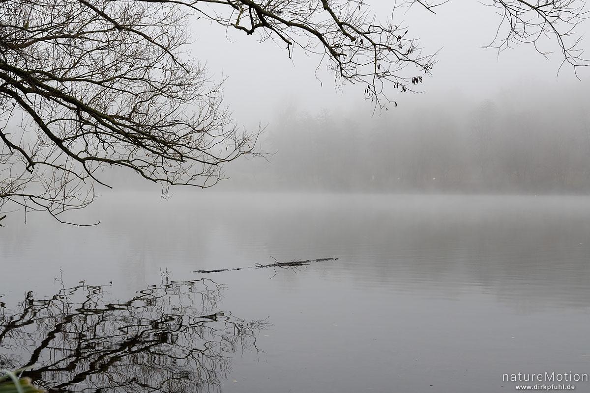 Nebelstimmung am Göttinger Kiessee, Göttingen, Deutschland