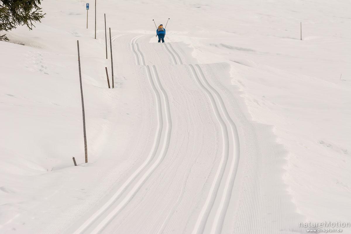 Ski-Langläufer, Winterlandschaft, Schwendeloipe, Riezlern - Kleinwalsertal, Österreich