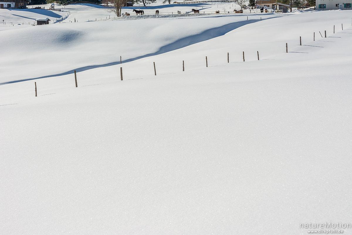 Zaun in Schneefläche, Riezlern - Kleinwalsertal, Österreich
