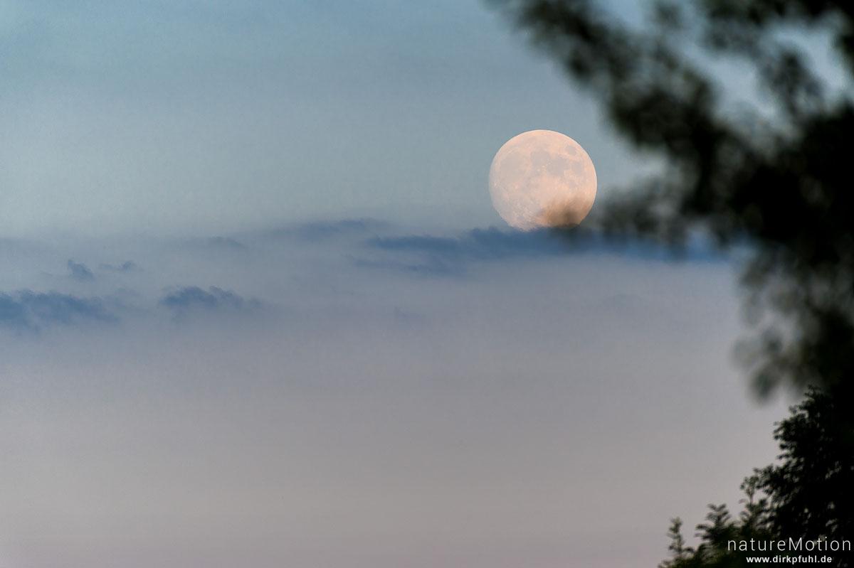 Mondaufgang, nahezu voll, Kiessee, Göttingen, Deutschland