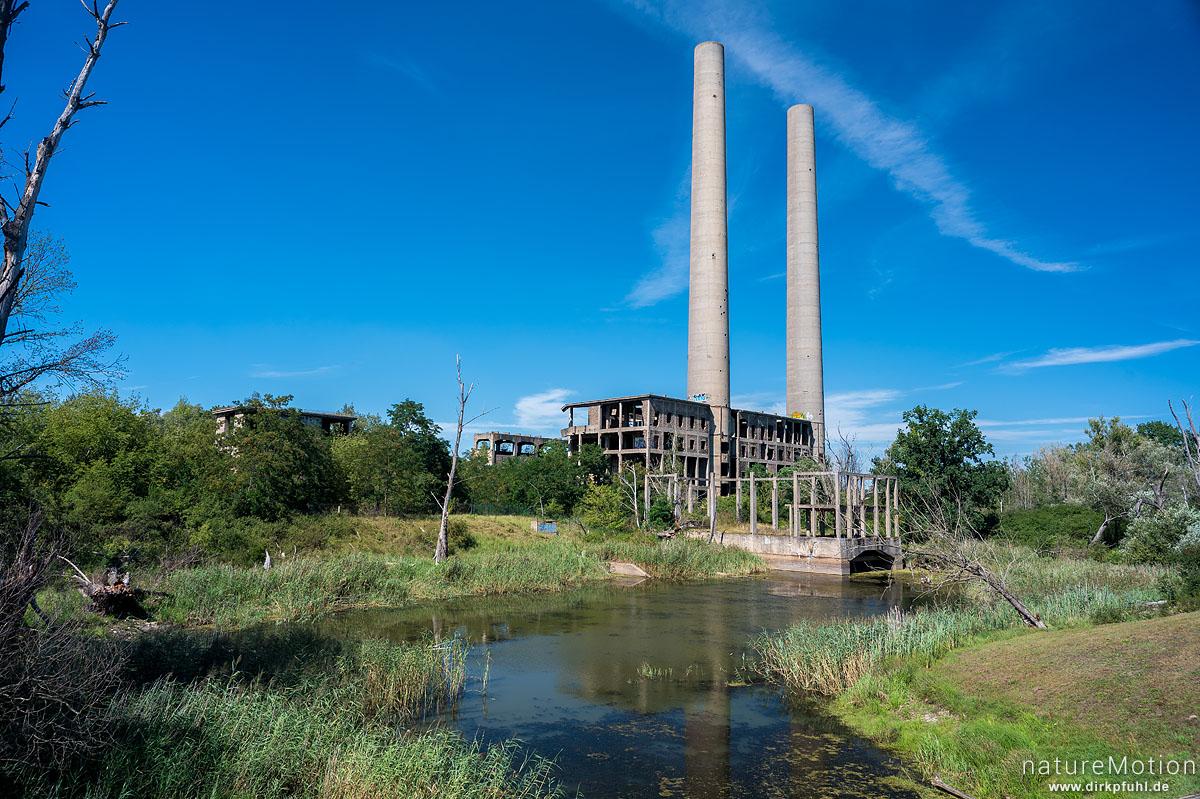 Ruine einer Fabrik, Schornsteine, Eisenhüttenstadt, Deutschland