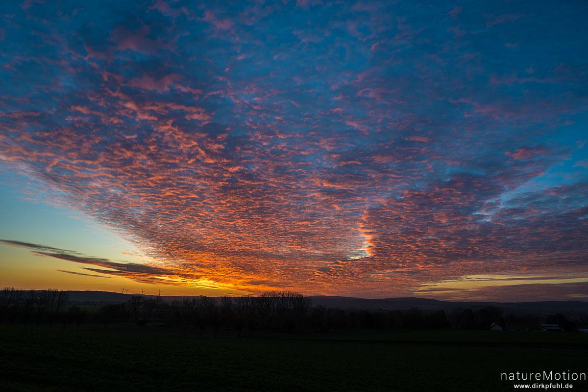 Sonnenuntergang, Leineauen südlich Göttingen, Göttingen, Deutschland