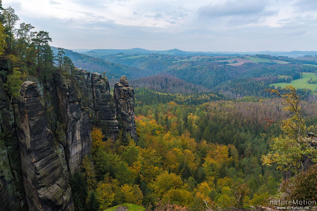 Felswände im Herbstwald, Affensteinweg, Bad Schandau, Deutschland