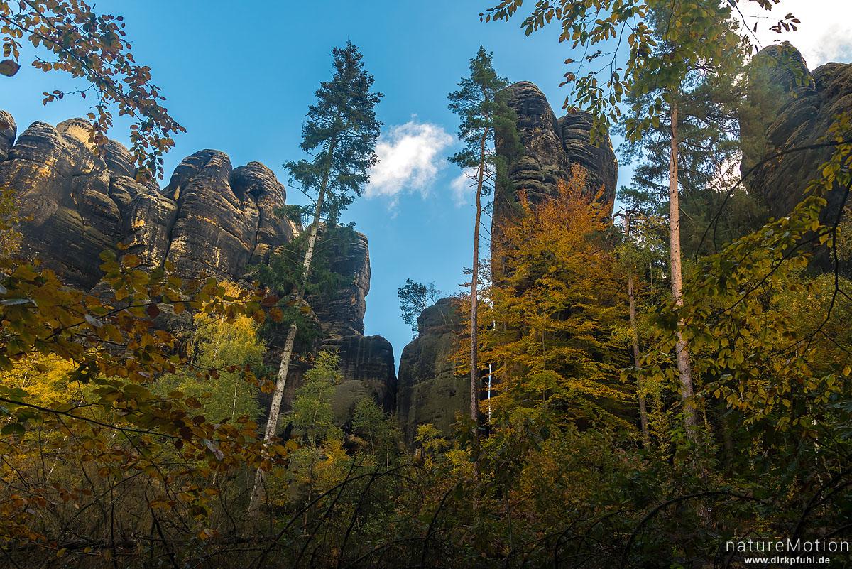 Schrammsteine, Herbstwald, Bad Schandau, Deutschland
