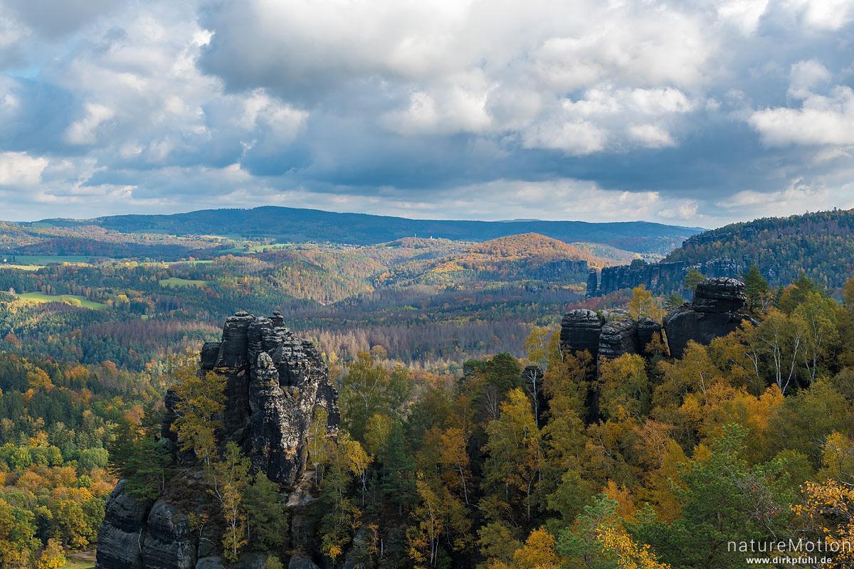 Schrammsteinaussicht, Herbstwald, Bad Schandau, Deutschland