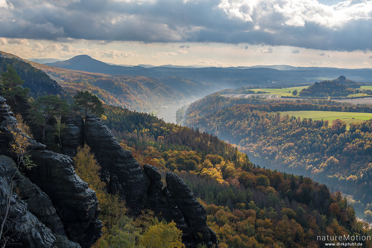 Elbe, Schrammsteinaussicht, Herbstwald, Bad Schandau, Deutschland