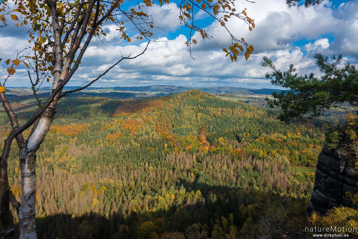 Hohe Liebe, Schrammsteinaussicht, Herbstwald, Bad Schandau, Deutschland