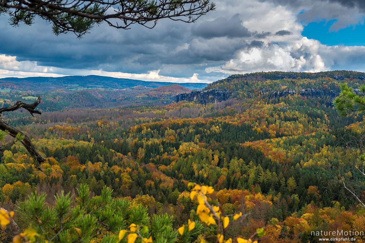 Schrammsteine, Gratweg, Herbstwald, Bad Schandau, Deutschland