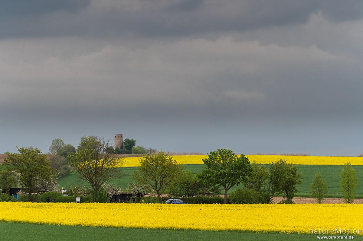 Diemardener Warte, blühende Rapsfelder, Regenwolken, Göttingen, Deutschland