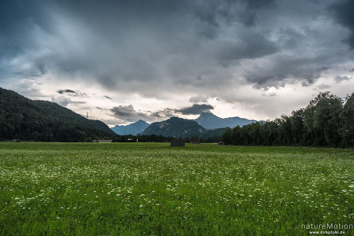 Gewitterfront über Grünland, Vils (Allgäu), Deutschland