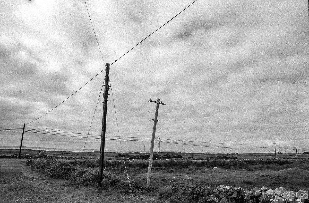 Strommasten, Connemara, Irland